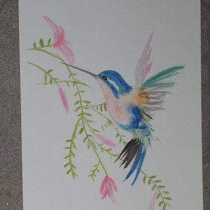 "New, Humming Bird watercolor painting, 7""x10"""
